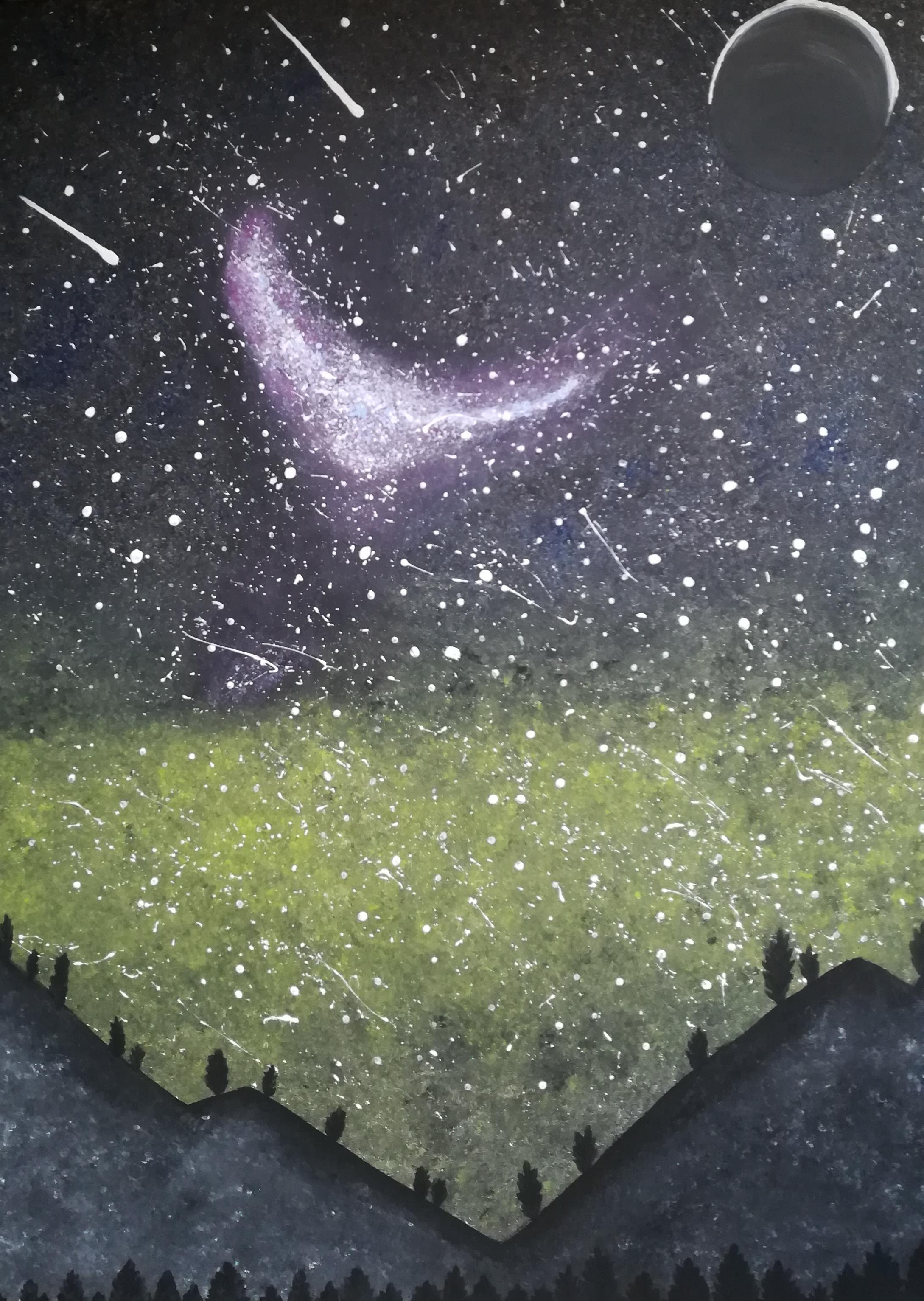 Galaxie mit LED Kette, Sternenbilder und Nachtleuchtpaste 60 cm x 80 cm  Preis 150 Euro