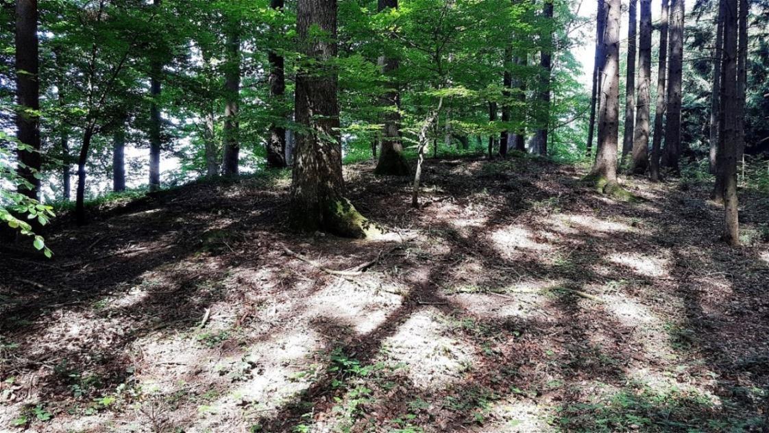 Schweiberwald-West - Riesentumulus