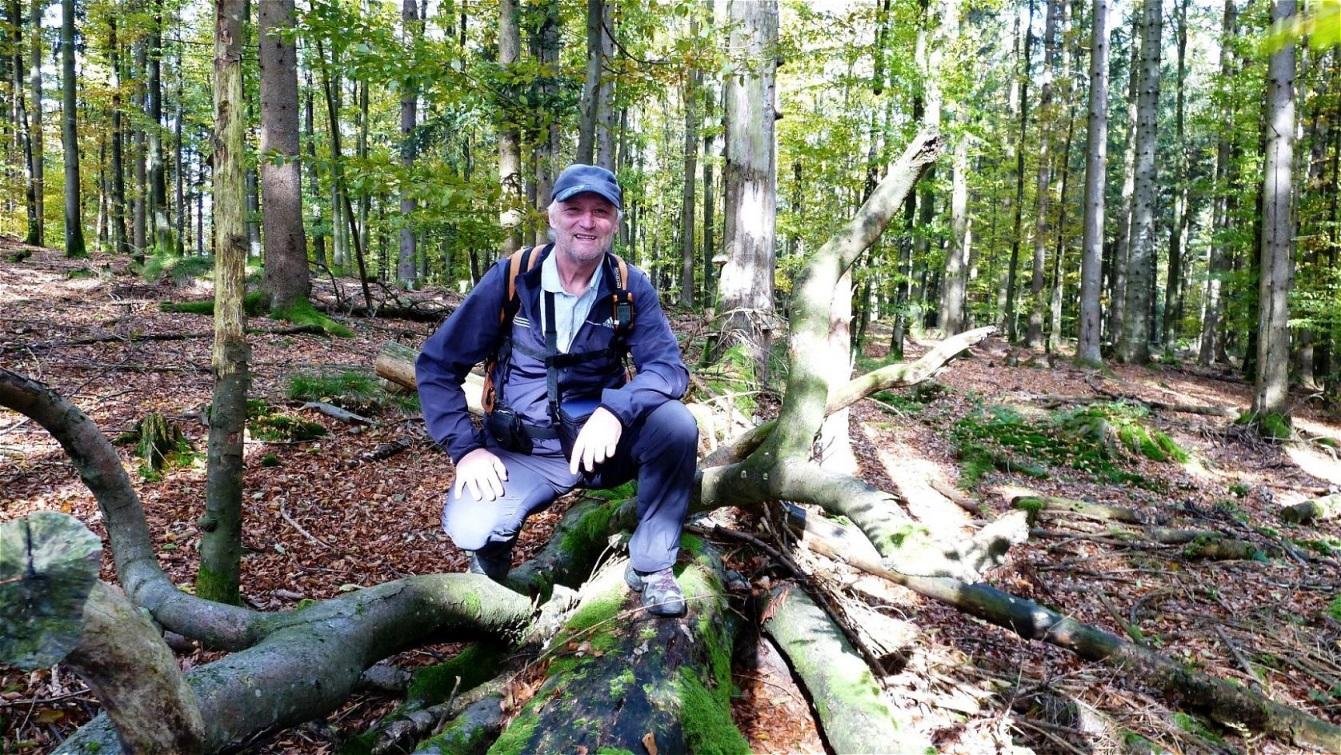 Im Kobernaußerwald