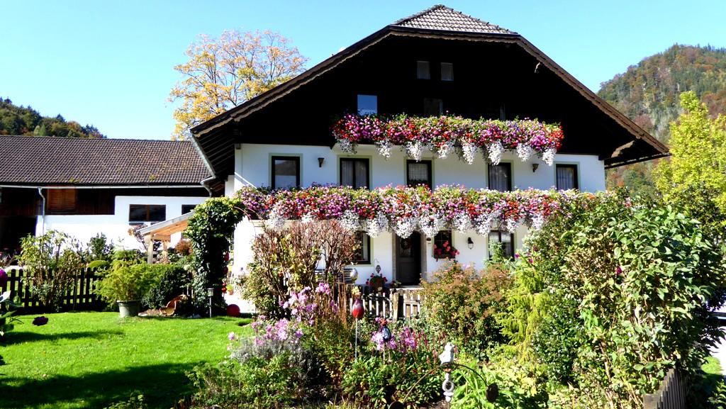 Hof in der Ortschaft Ellmau