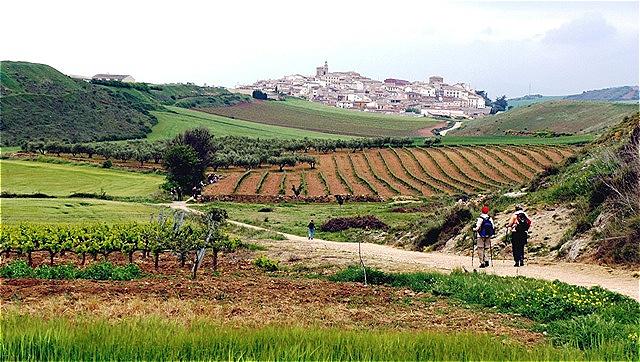 Blick auf Cirauqui