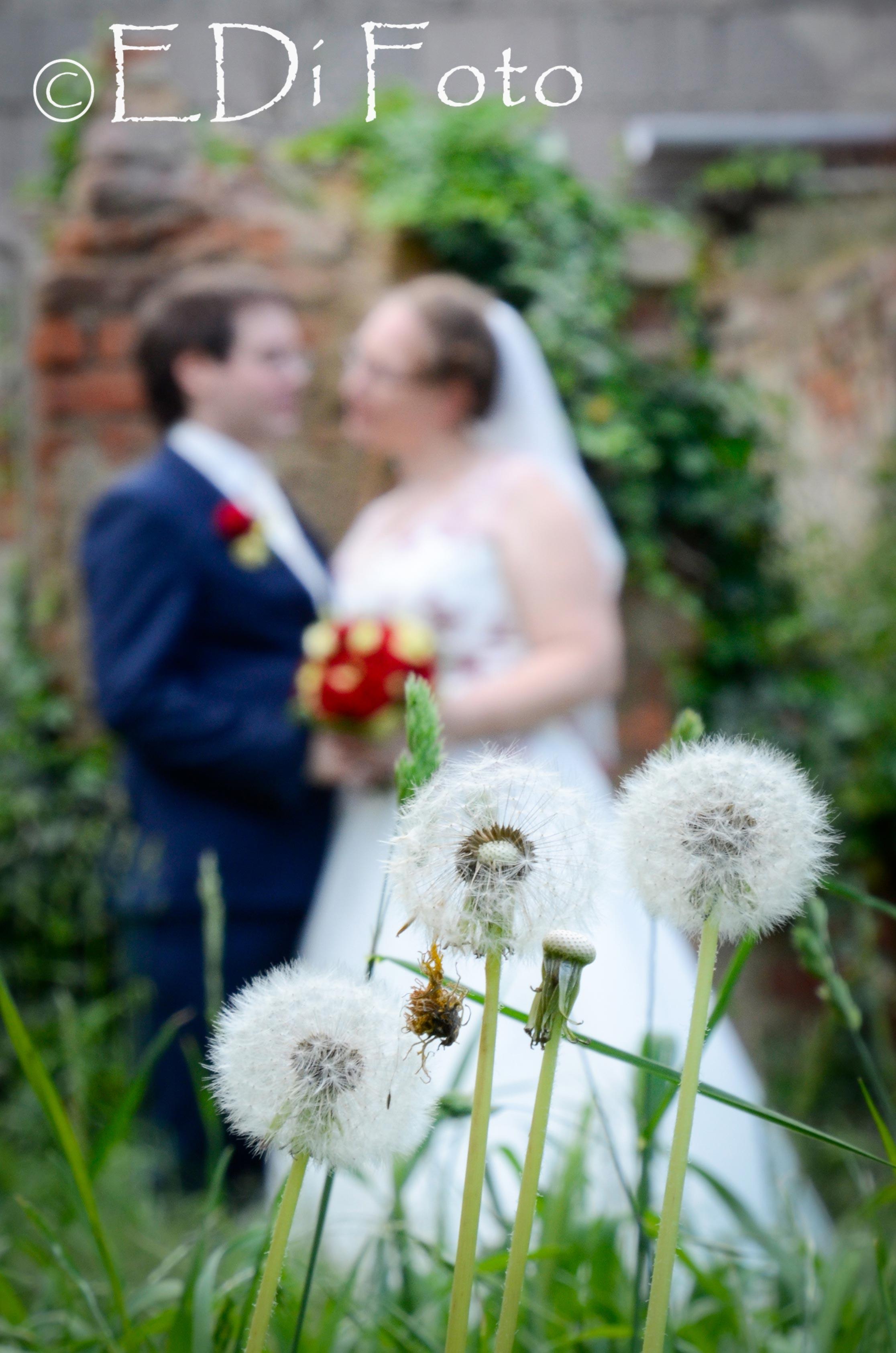 https://0501.nccdn.net/4_2/000/000/060/85f/Hochzeit-Schinnerl--602-.jpg