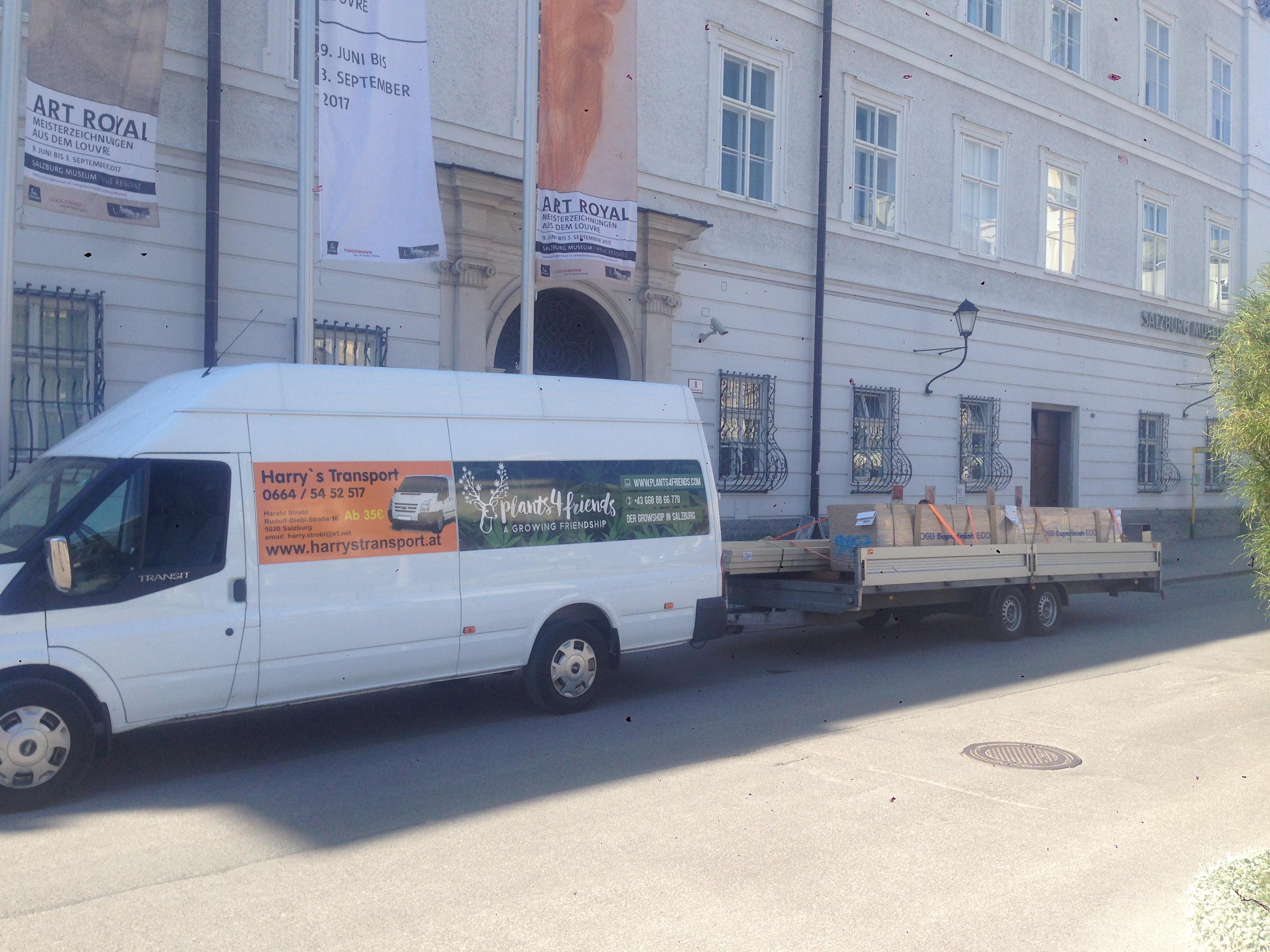 Holz für Glockenspiel Salzburg