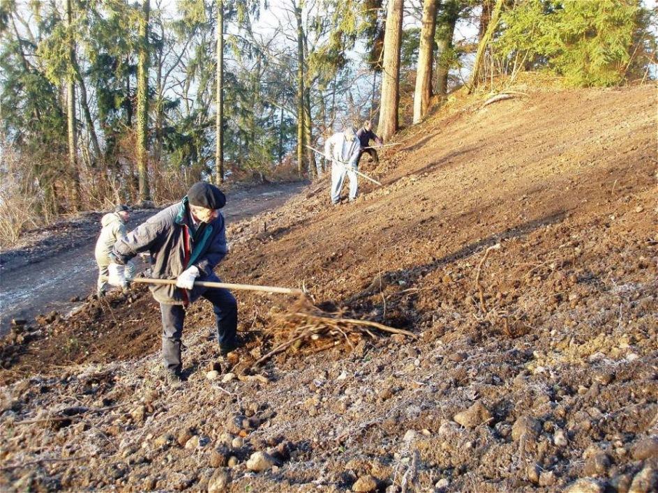 Der Hang wird für die Bepflanzung vorbereitet