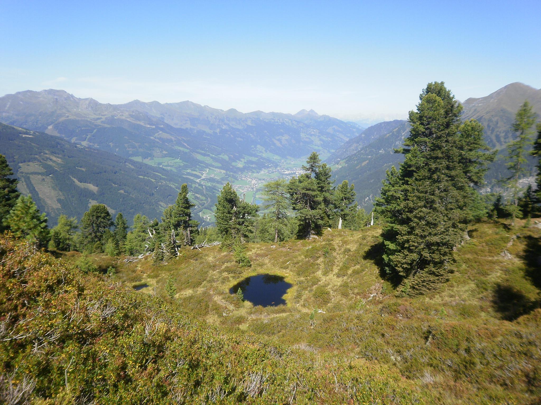 Graukogel Zirbenweg