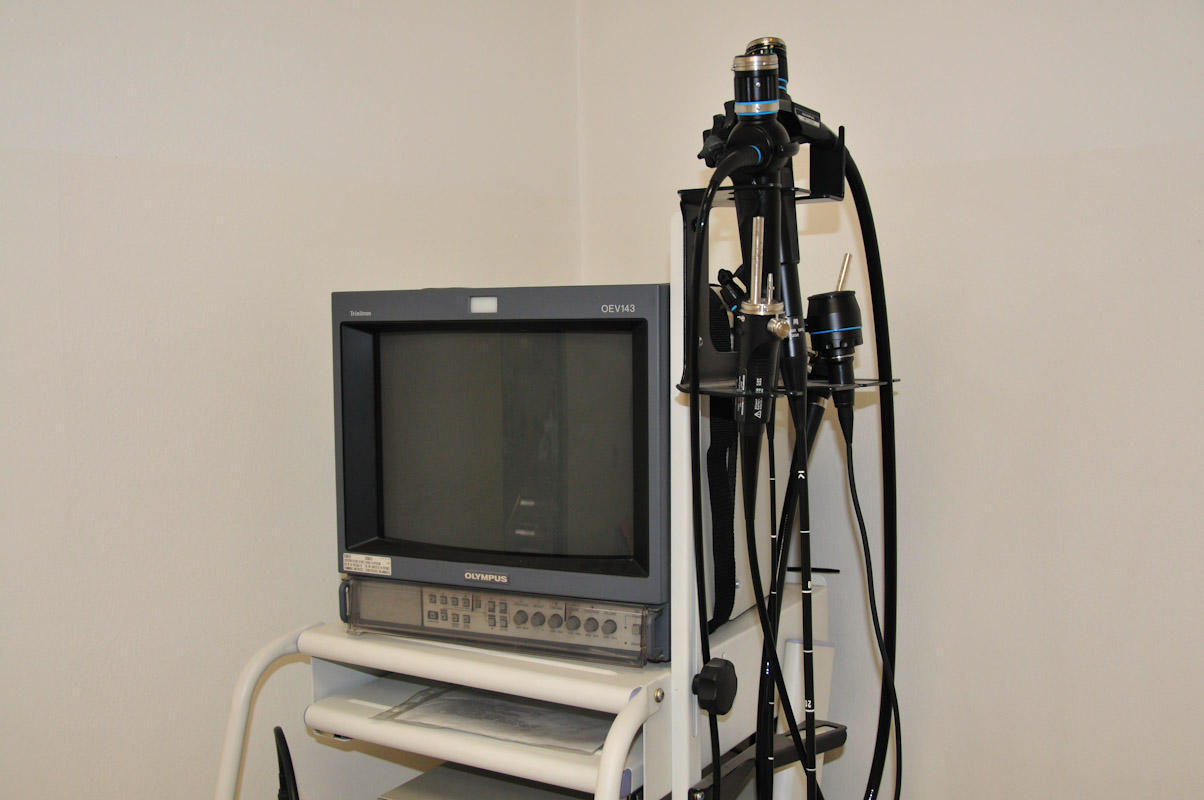Monitor fleksibilnega endoskopa