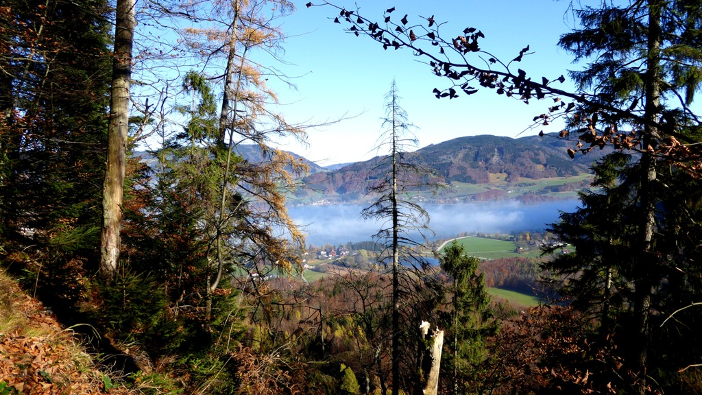 Tiefblick auf die Ortschaft Scharfling und den Egelsee