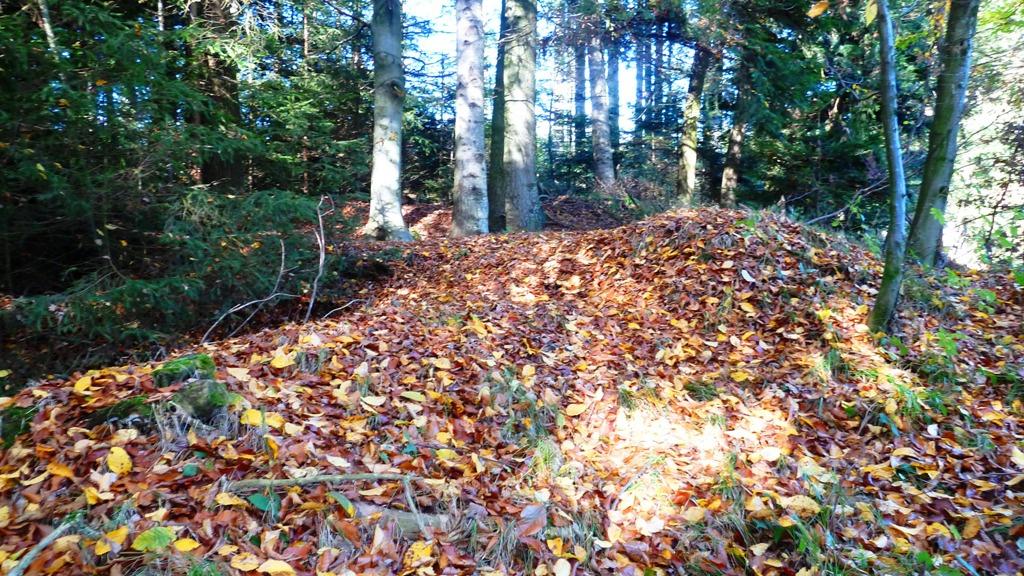 Tumulus unter buntem Herbstlaub
