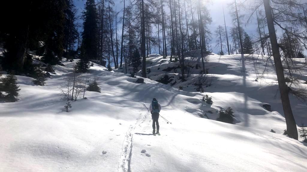 Endlich auf dem Schnee