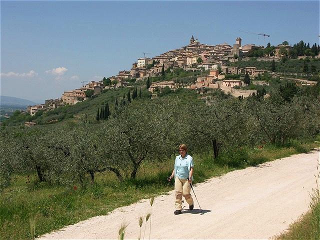 "Trevi nennt sich ""capitale dell'olio d'oliva"", Hauptstadt des Olivenöls"