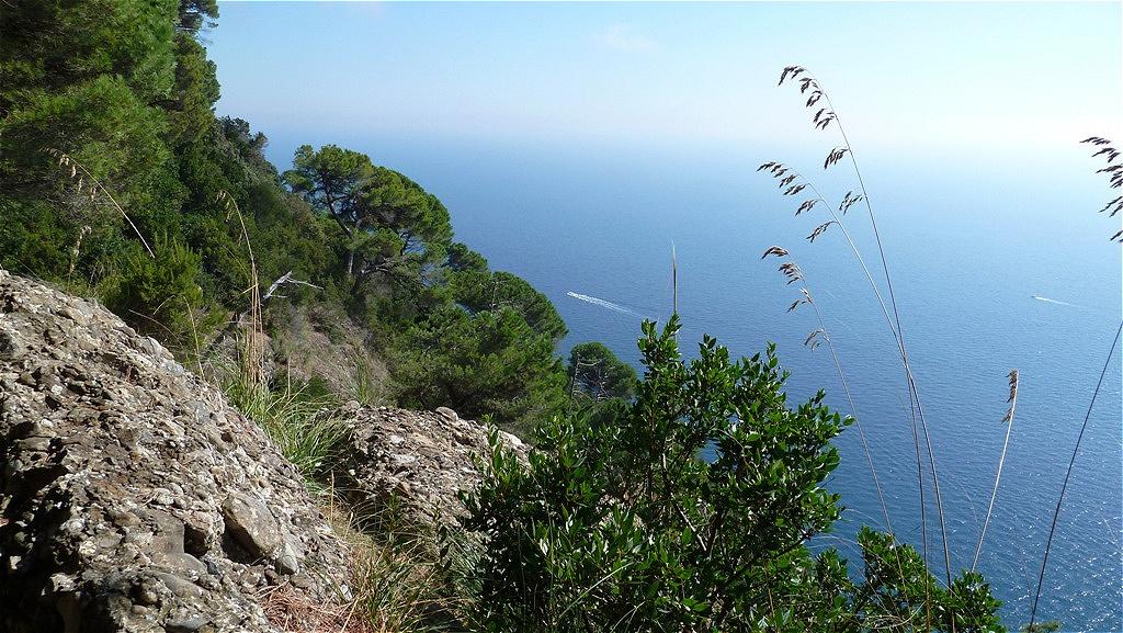 Ausgesetzte Pfade führen über die Klippen der Steilküste