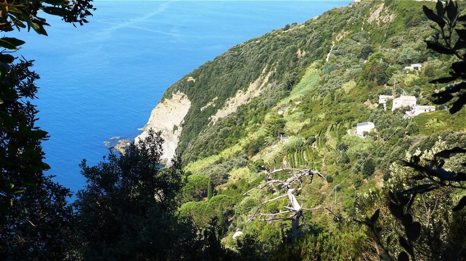Der Weg hoch über der Steilküste ermöglicht gewaltige Tiefblicke