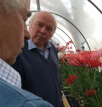 Deep discussion between the experts! Many of the plants now in Steve's capable hands were seedlings bred by Chris.