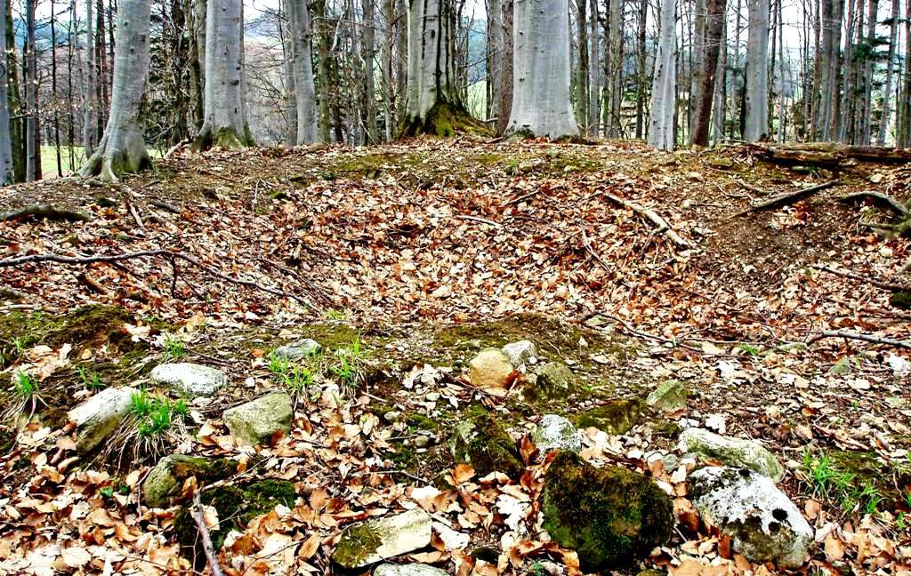 Geöffnetes Hügelgrab - Hügel II: Durchmesser 8 m, Höhe 1 Meter - 1899 geöffnet Erkennbar ist eine ringförmige Steinsetzung. Das Erdreich war mit Kohle und gebrannten Knochen durchsetzt. Gefunden hat man eine eiserne Messerklinge, eine eiserne Dolchklinge und eine Keramikschüssel.