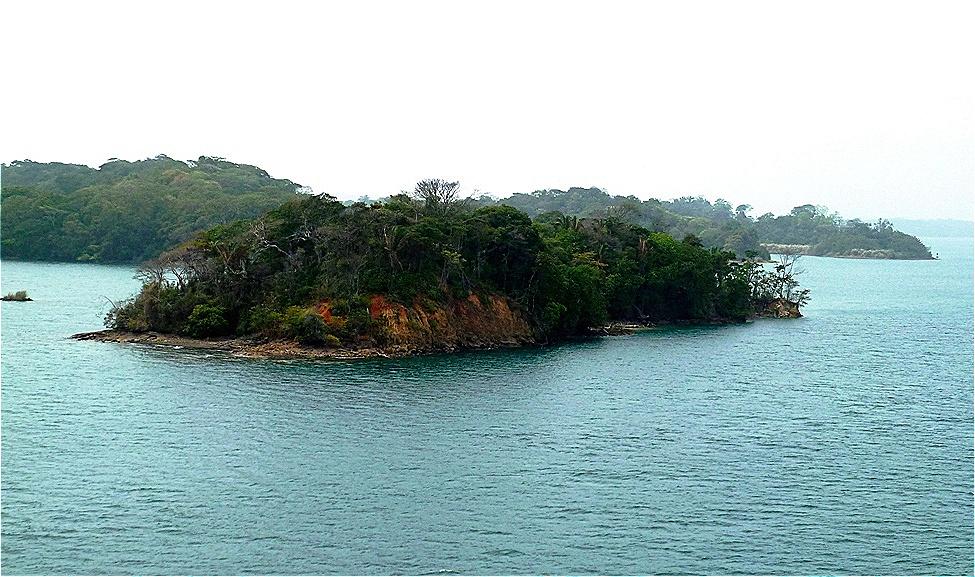 Inselwelt im Gatun See
