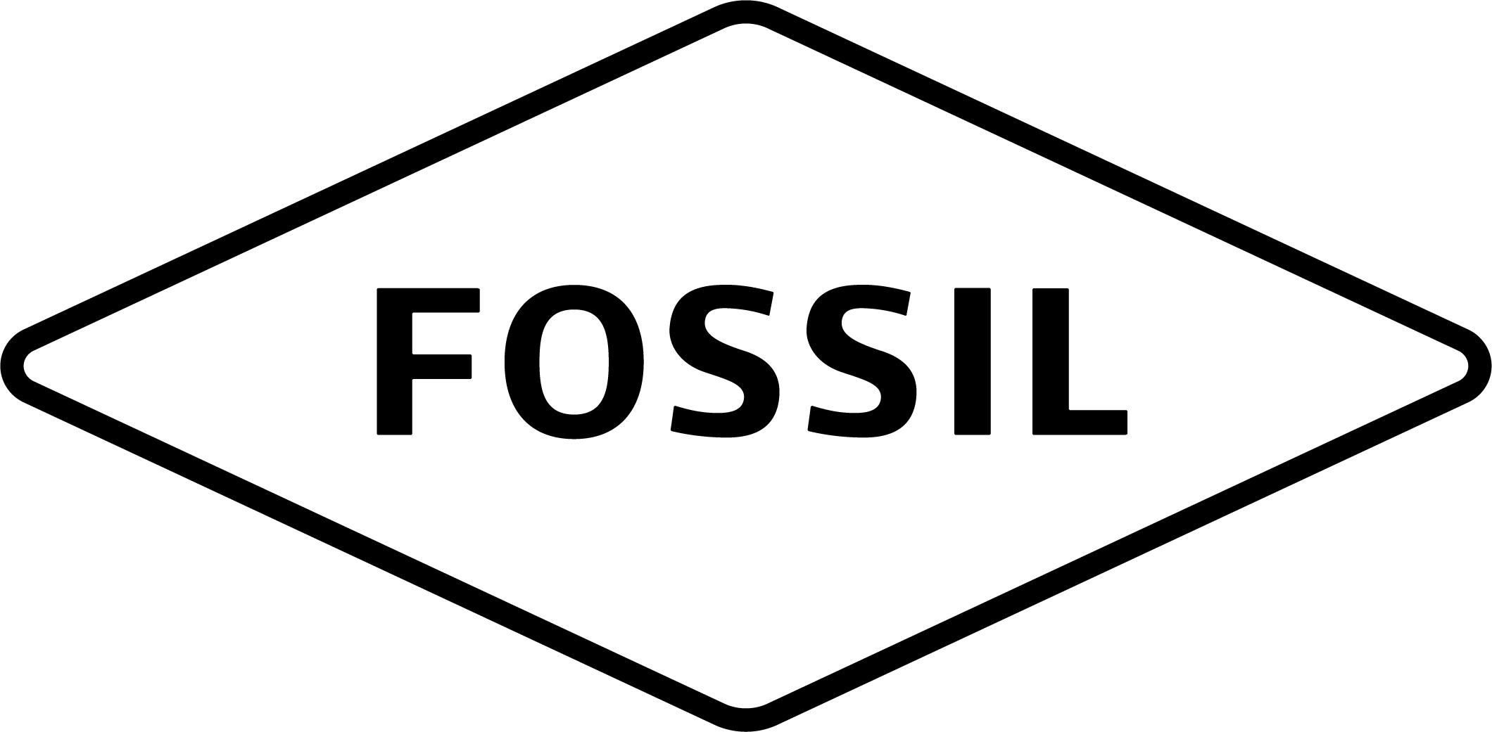 https://0501.nccdn.net/4_2/000/000/076/de9/FSL_Logo_Primary_black_1-1--Kopie.jpg