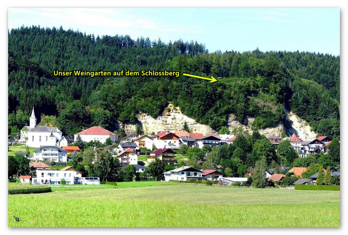 """Friedburg Ortsteil """"Alter Markt""""mit dem Weingarten auf dem Schlossberg"""