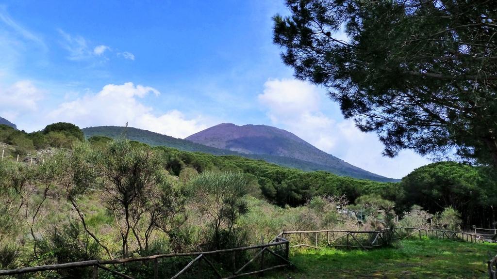 Am Fuße des Vesuvs Der Parco Nazionale del Vesuvio