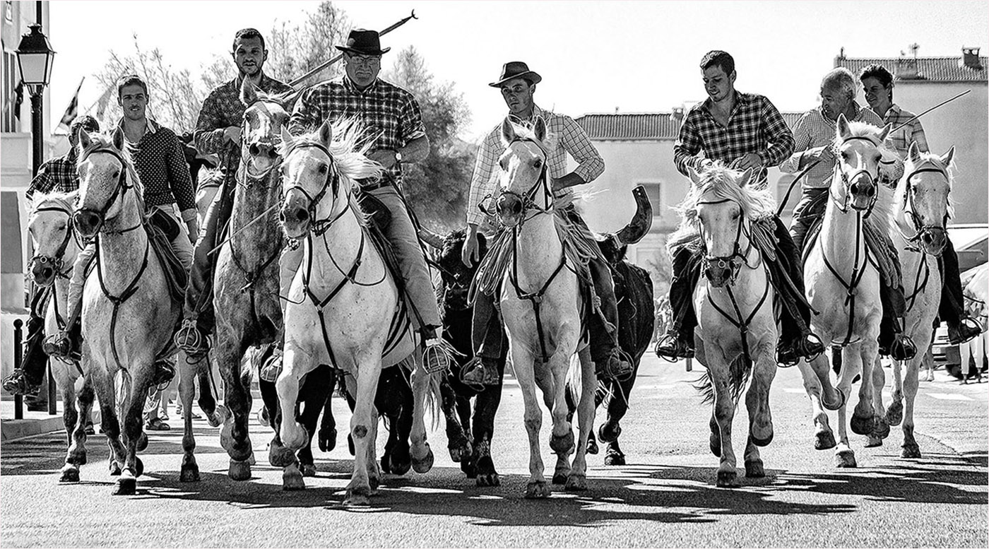 1st Place: The Guadians moving the bulls (Roger Paxton)