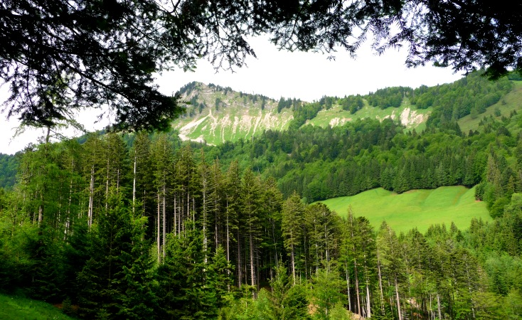 Steile Abbrüche im Gipfelbereich