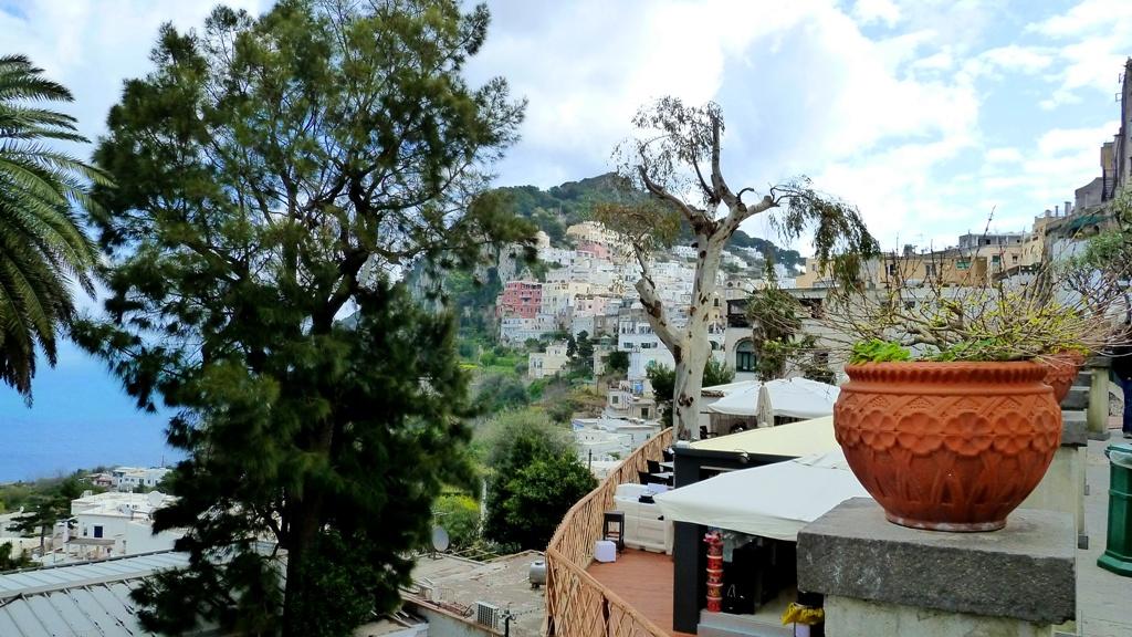Capri hat ein ausgeglichenes, mildes Klima. Auf Terrassen gedeihen Wein-, Öl- und Obstbäume