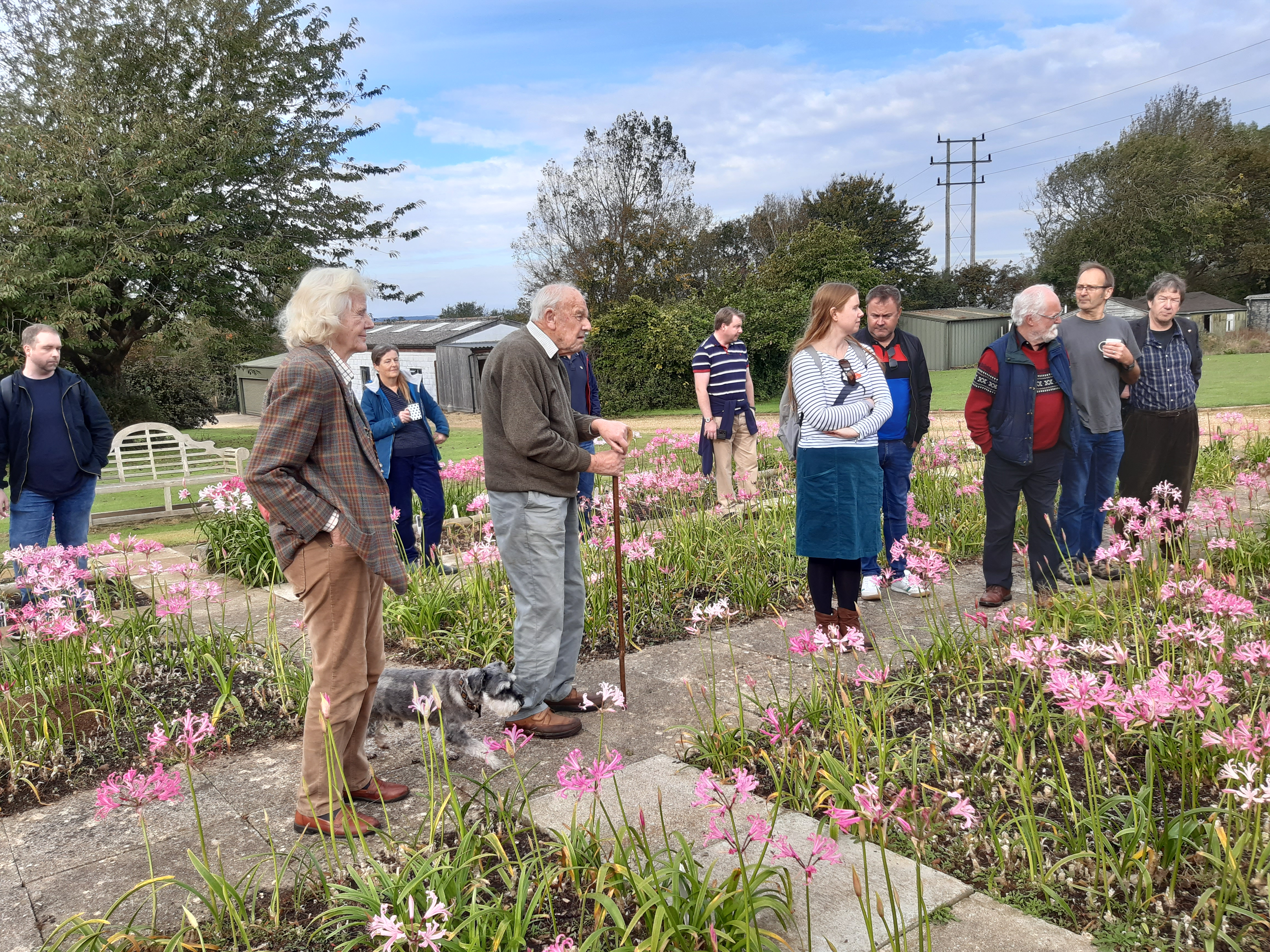 Members admiring the hardy Nerine Bowdenii grown by Ken Hall.
