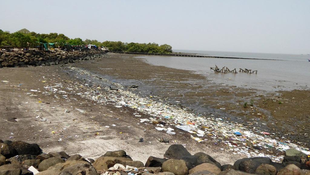 Der Strand ist arg verschmutzt !