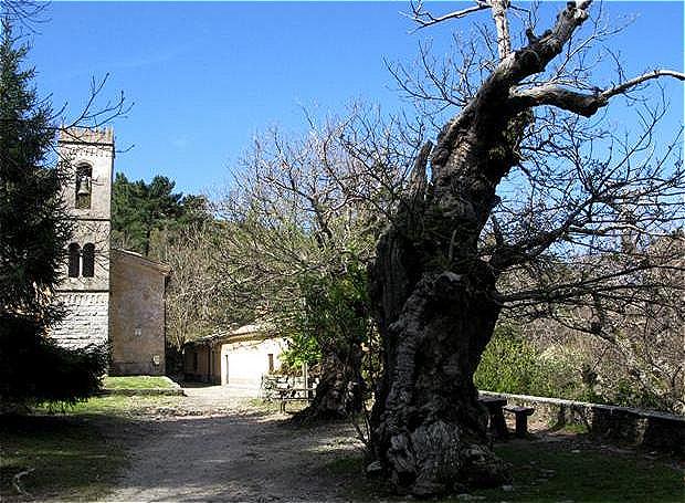 Aufstieg zur Wallfahrtskirche Madonna del Monte