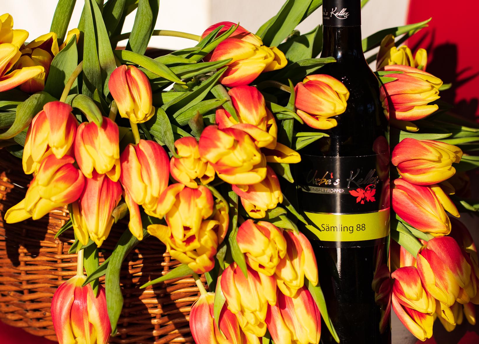 A g'miatliches Glaserl Wein, dass is Leben!