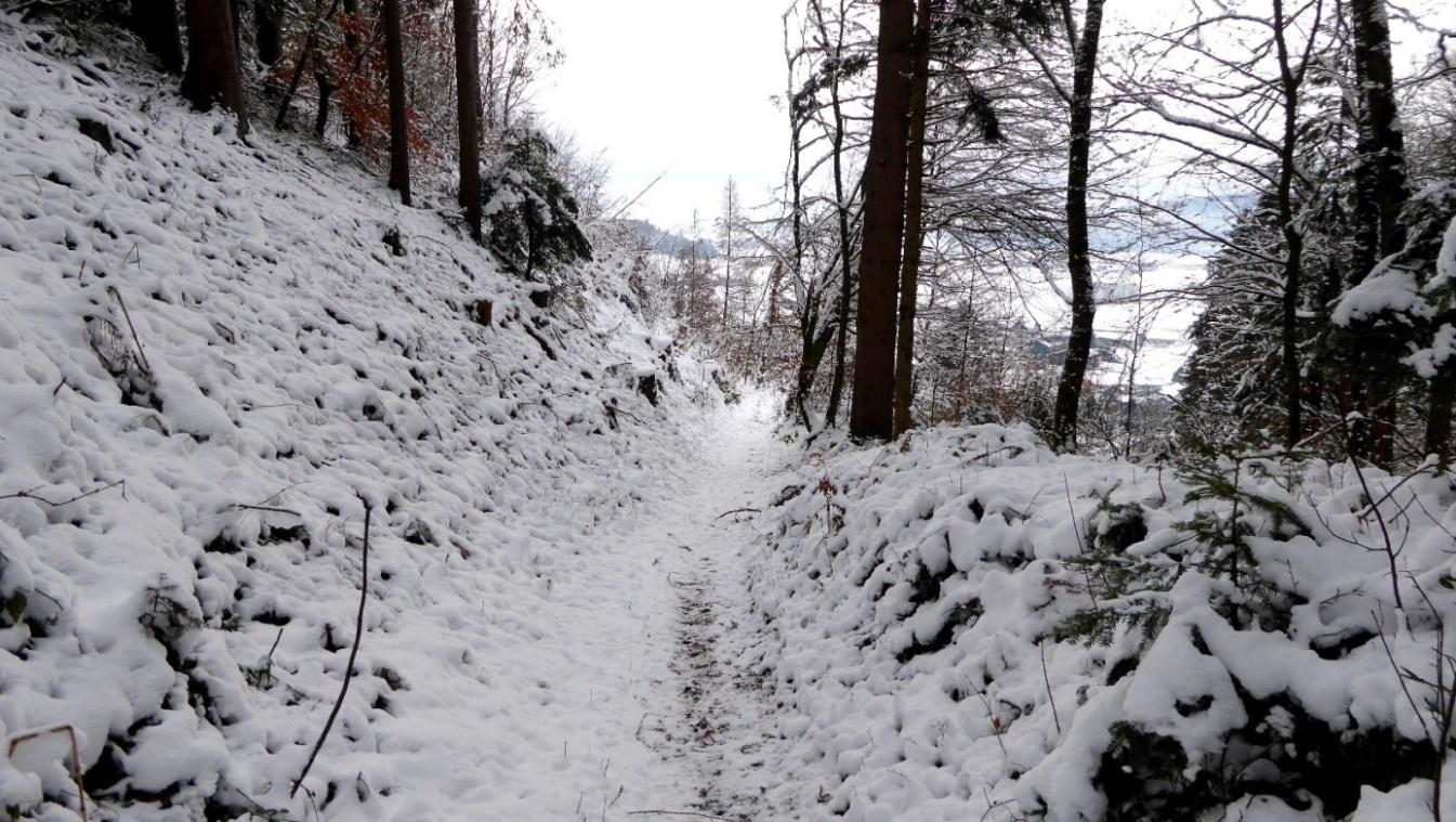 """""""Kuchlersteig"""" - historischer Weg auf den Schlossberg"""