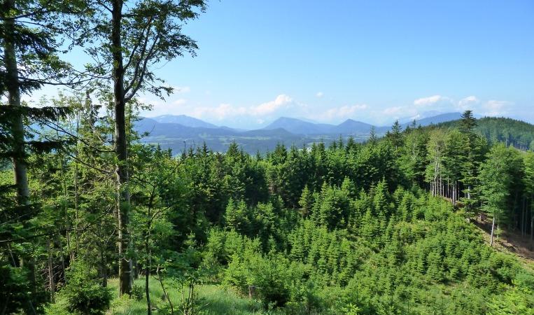 Faistenauer Berge