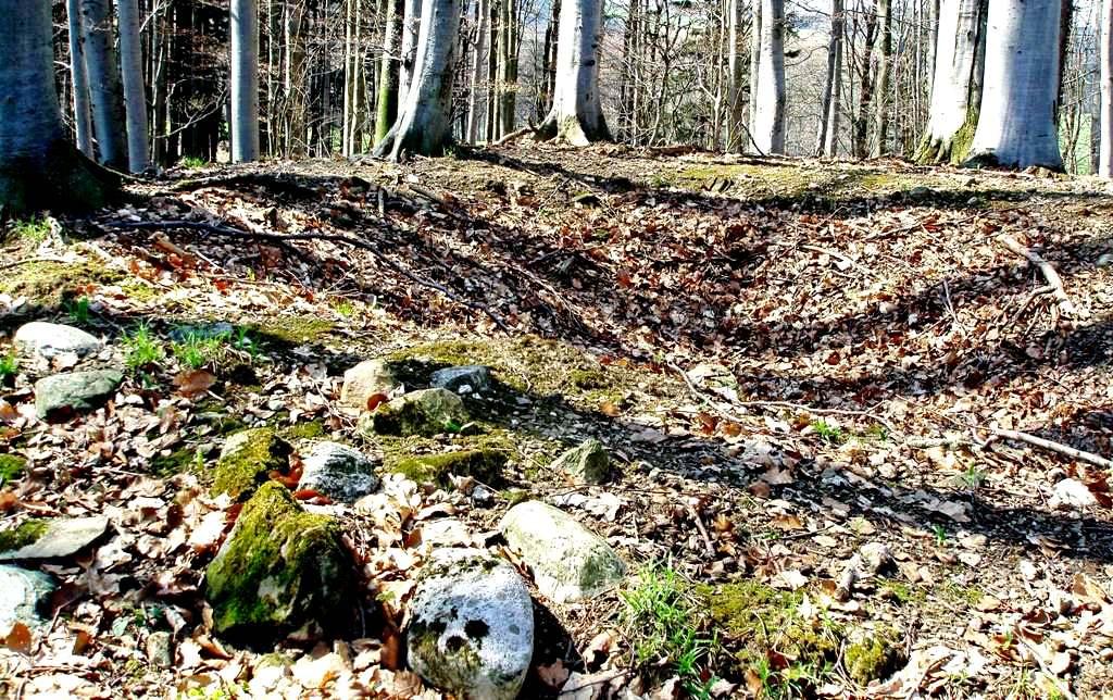 """Keltengrab, das 1899 geöffnet wurde Hügel I: Durchmesser 12 m, Höhe 1,5 m. Gefunden hat man ein großes Kegelhalsgefäß, das wahrscheinlich als Urne Verwendung fand, und in der Mitte eine """"Römische Nachbestattung""""."""